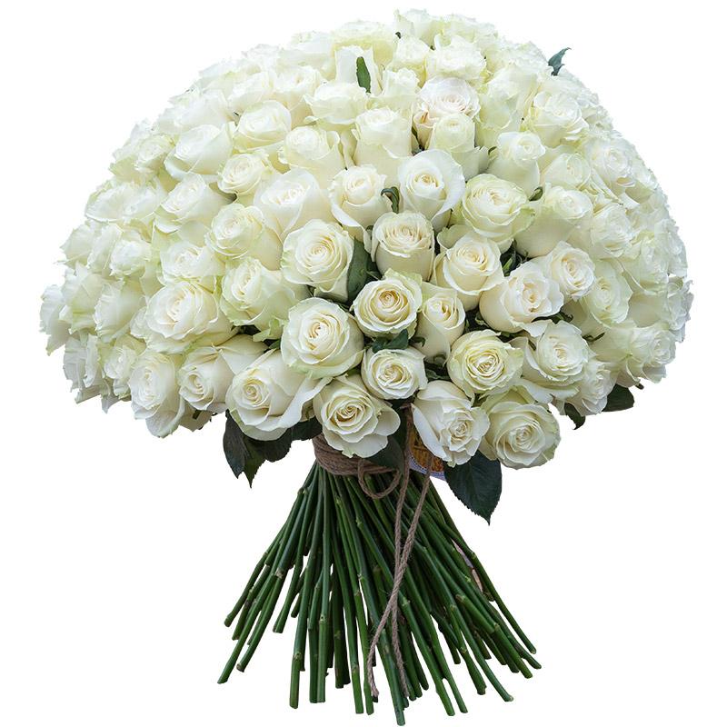 картинка букет белых цветов украшения оригинального